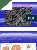 Anatomia Microbiana 2016 PDF