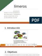 Bio Diapositivas (1)