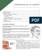 Clase IV Morfofisiologia de La Cavidad Oral