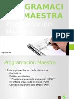 Programacion Maestra
