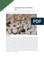 Control de Micotoxinas en Avicultura
