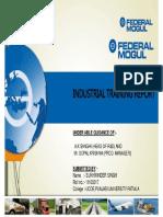 316838503-Federal-Mogul.pdf