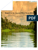 river amazon - dams and pollution 2
