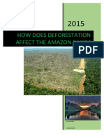 river amazon - deforestation