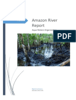 river amazon - pollution