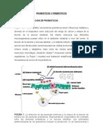 Probióticos y Prebióticos Mecanismos e Accion