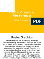 Understanding Digital Graphics