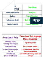 muscle cards