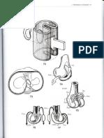 Kapandji, A. I. - Fisiología articular 2 - Miembro inferior (parte 2 de 4).pdf