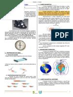 Eletromagnetismo (1).pdf