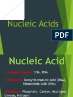 05  nucleic acid powerpoint