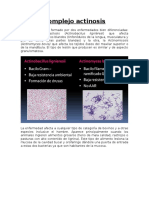 Complejo Actinosis