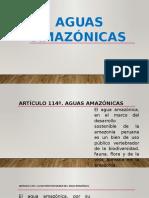 Aguas Amazónicas
