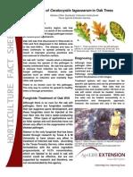 Oak Wilt Fact Sheet