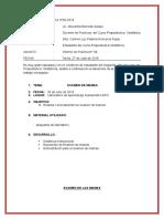 INFORME-DE-PRACTICA-T.PERINATALES.docx