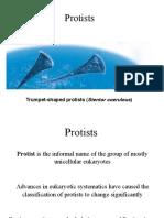 Protists.pdf