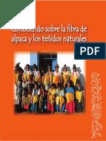 Manual_teñido.pdf