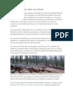 Impacto Ambiental de La Produccion Del Papel