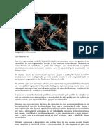 Redes para sustentar a vida.doc