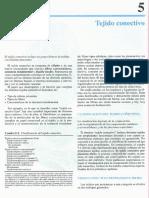 Cap 05-Tejido conectivo.pdf