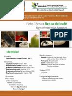 Ficha_T_cnica_Broca_del_caf_.pdf