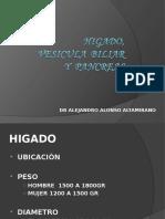 HIGADO, BESICULA BILIAR Y PANCREAS[1].ppt