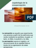 Psicopatologia de La Percepción