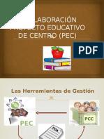 PRESENTACION PEC 2014.pptx