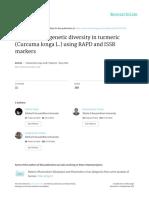Evaluation of genetic diversity in turmeric (Curcuma longa L.) using RAPD and.pdf