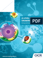 Drawing Skills Booklet for A Level Biology