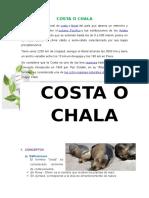 Region Chala Ecosistemas