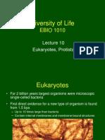 Lecture 10 - Eukaryotes, Protista