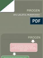 PIROGEN.pptx