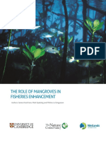 The Role of Mangroves in Fisheries