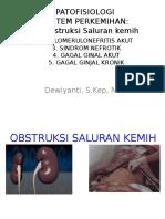 patofisiologi sistem perkemihan.pptx