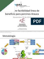 Estudio Porcicola -Arauca