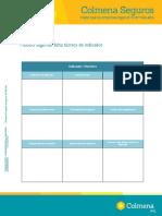 ANEXO9.Modelofichaindicador.pdf