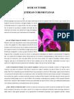 Orquideas Coromotanas - Historia