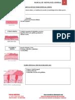 Clasificacion del tejido epiteleal simple.pdf