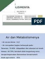 Air Dan Metabolismenya.ppt
