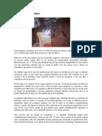 Elaboracion de Cerveza Artesanal-Clarificación Con Gelatina