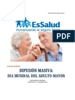 Plan Día Mundial Del Adulto Mayor