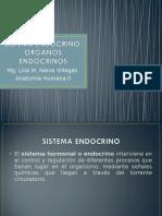 4_ Sist. Endocrino