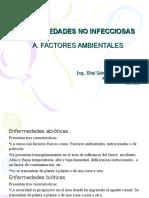 Clase 5 Enfermedades Abioticas
