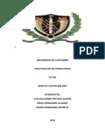 Protocolo Grupal Investigacion de Operaciones