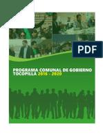 Programa de Gobierno Comunal 2017-2020
