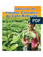 Reproduccion de Plantas Clonales de Cafe Robusta