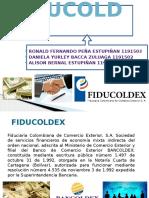 4 Fiducoldex