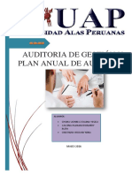 AUDI.gestION y Plan Anual de Auditoria (1)