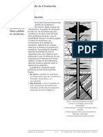 N Pérdida de circulación.pdf